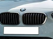 BMW 1 Series Exterior photo grille 097