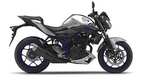 Yamaha MT-03 Model Image